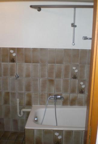 - (renovieren, Badezimmer, Fliesen)