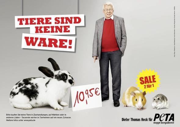 Tiere sind keine Ware!! - (Katzen, Katzenkauf)