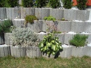 Sichtschutz Mauer Aus Pflanzsteinen ? Reimplica.info Pflanzringe Beton Setzen Gartengestaltung