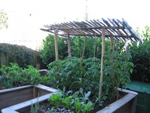 Hochbeet mit Tomatendach - (Holz, öko, gartenbau)