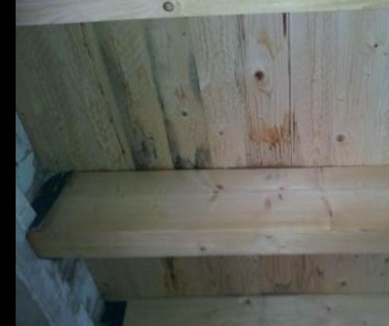 feuchtigkeit schimmel bei unfertigem flachdach neubau haus schimmel bau. Black Bedroom Furniture Sets. Home Design Ideas