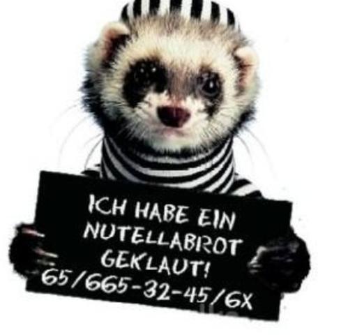 Nutella - (Anwalt, Jura, Strafrecht)