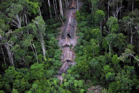 Ureinwohner - (Menschen, Geschichte, Natur)