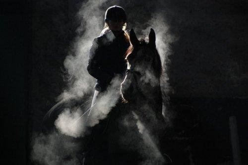 Fotoideen Für Pferd Und Reiter (trotz Helm)? (Pferde, Foto