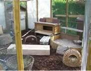 kanninchen draussen kaninchen freihaltung winter. Black Bedroom Furniture Sets. Home Design Ideas