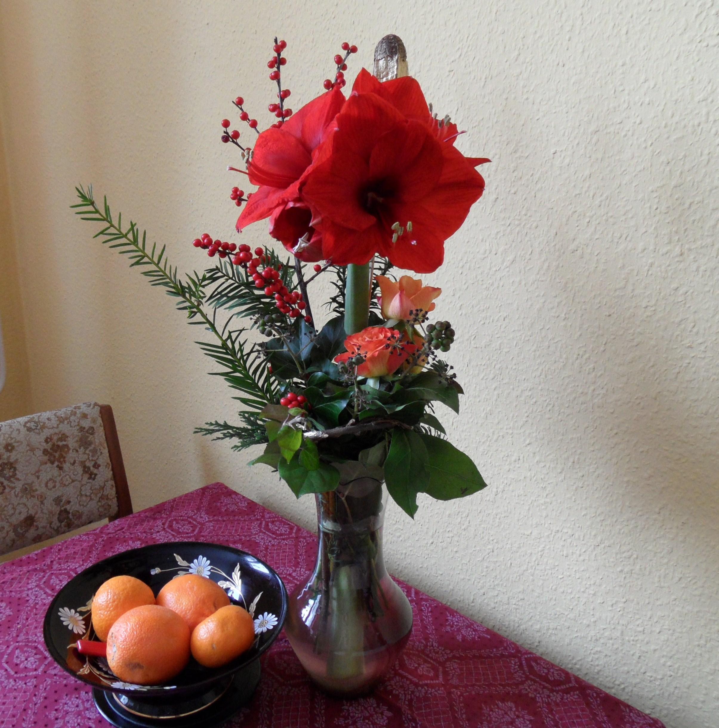 kann eine amaryllis zwiebel mehrmals bl hen garten pflanzen blumen. Black Bedroom Furniture Sets. Home Design Ideas
