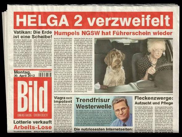 NGSW & Helga 2 - (Hund, Streit, Eheleben)