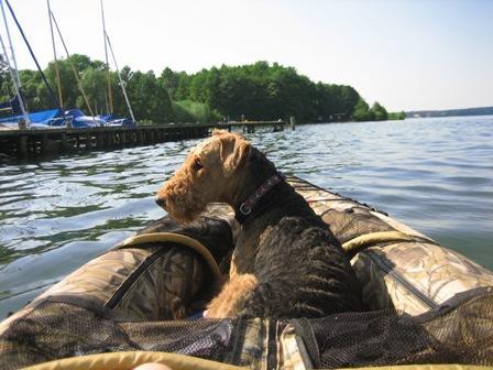 Schlauchboote Hund Boote