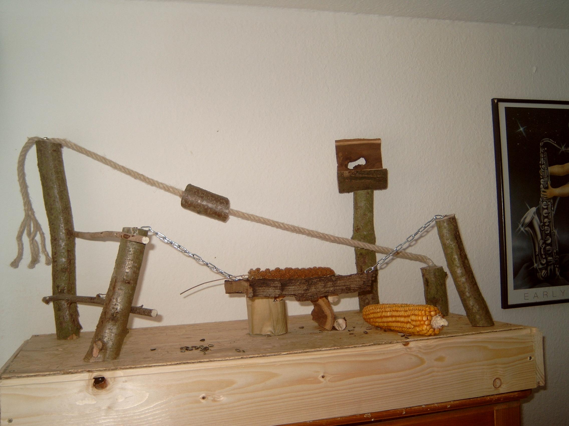 vogelspielzeug bauen was lieben wellensittiche tiere v gel. Black Bedroom Furniture Sets. Home Design Ideas