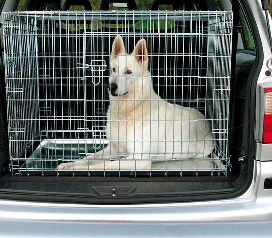 Auf was muss man bei einer transportbox achten hund