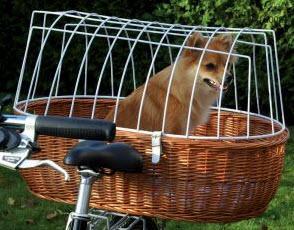 Hunde Fahrradkorb - (Freizeit, Hund, Fahrrad)