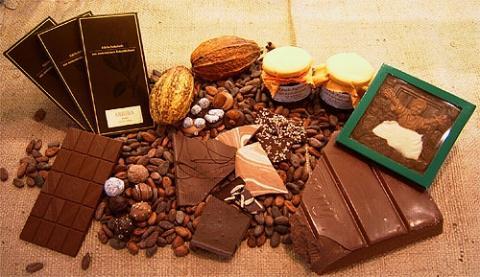 Die Kakaobohne - ein wichtiger Bestandteil von vielen Lebensmitteln - (Gesundheit, essen, Lebensmittel)