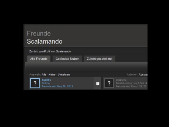 Steam Freunde Netzwerk