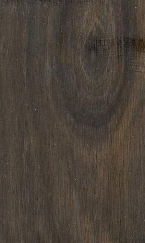 - (Holz, Art)