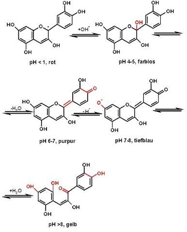Bild 1 - (Schule, Chemie, ph-Wert)