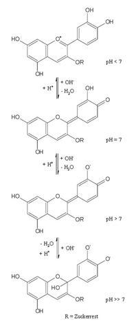 Bild2 - (Schule, Chemie, ph-Wert)
