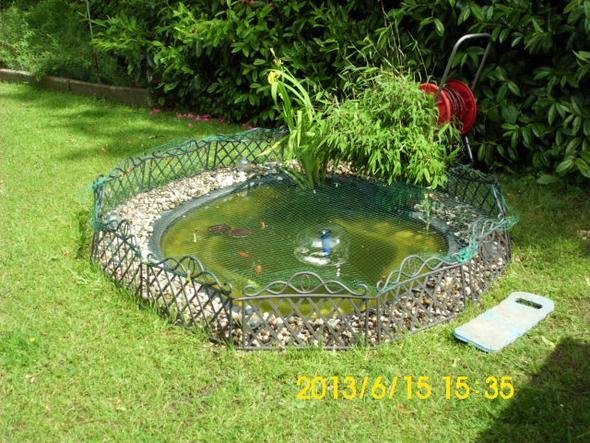 Mein Teich - (Garten, Teich, kieselsteine)