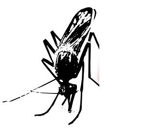 Mückenstiche - Vorbeugung mit Natur -  www.kosmintra.de - (Gesundheit, Mücken, Mückenstiche)