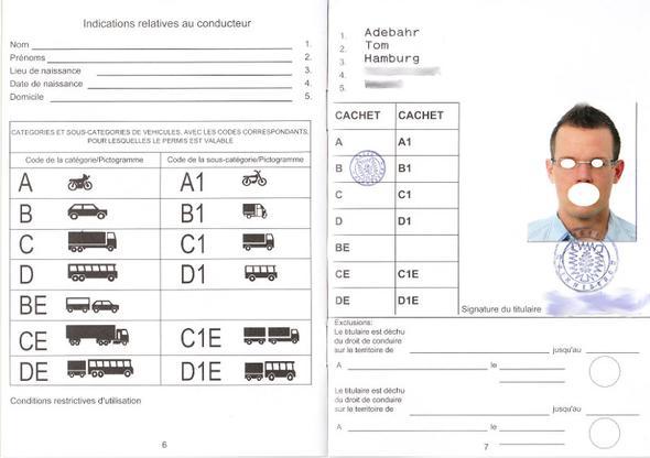 Internationaler Führerschein MUSTER - (internationaler Führerschein, Führerschein USA)