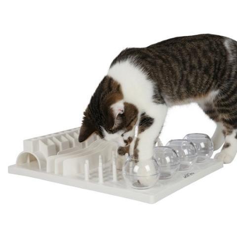 Cat activity Fun Board - (Arbeit, Katze, Spielzeug)