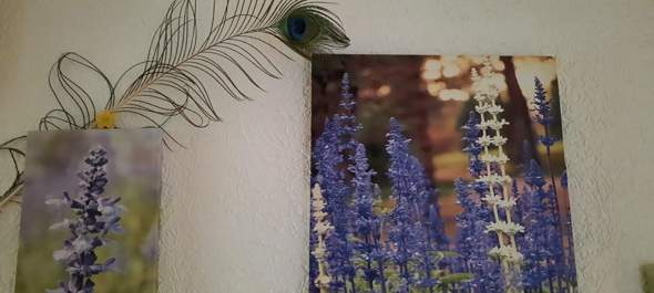 Do you find these peacock spring ugly and inappropriate as a deco or is it okay