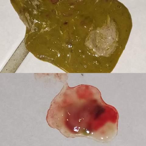 Welpe hat Durchfall mit Blut, (Achtung Bild)? (Gesundheit ...