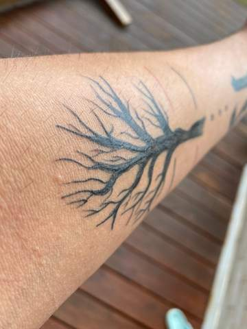 Entzieht bepanthen dem tattoo die farbe