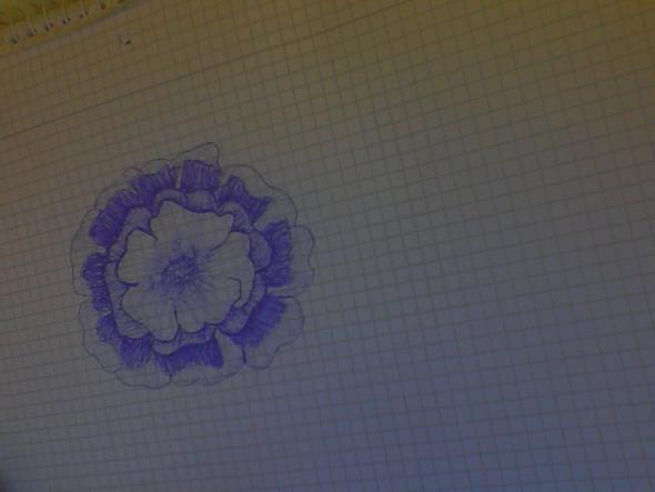 hier die Blume - (Bilder, Kunst, Meinung)