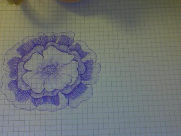 und nochmal die Blume - (Bilder, Kunst, Meinung)