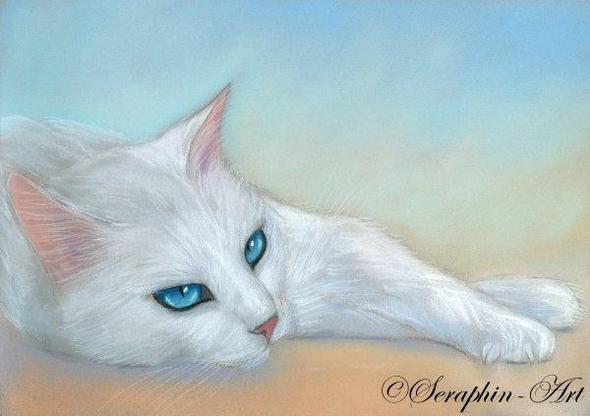 white - (Katze, Bedeutung Zeichen)