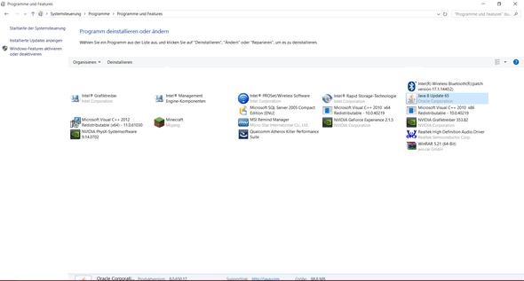 Bild 3 - (Minecraft, Windows 10, Java)