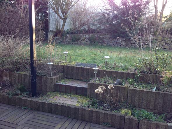 Terrasse mit Betonpflanzkübeln als Abgrenzung zur höher gelegenen Radenfläche - (Garten, Mauer, Terrasse)