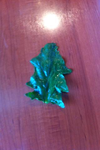 Hier das Blatt - (Garten, Pflanzen, Gärtner)