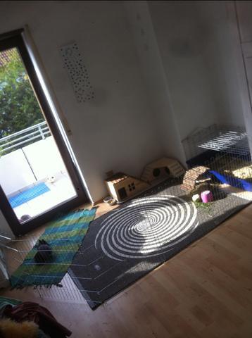 Kaninchengehege  - (Tiere, Kaninchen, Zimmer)