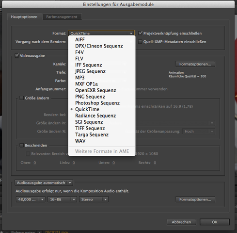 Screenshot der Formate - (Format, after-effects, rendern)