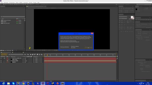 Fehlermeldung 2 - (Internet, Adobe, Intro)