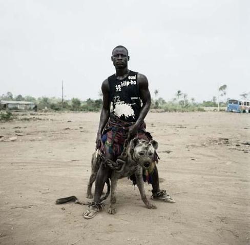 ist - (Hund, legal, Afrika)