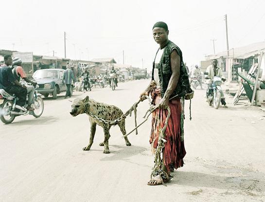 entsetzlich! - (Hund, legal, Afrika)