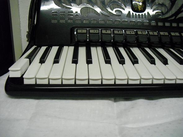 Akkordeon Weltmeister Caprice 120 Bass - 2 Tasten stehen hoch. wie kann ich selber reparieren?