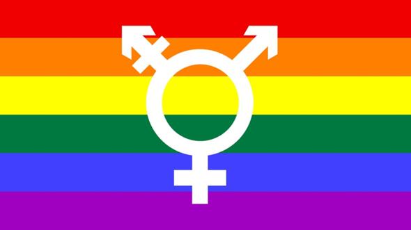 Akzeptiert ihr es, wenn jemand behauptet das es nur 2 Geschlechter gibt?