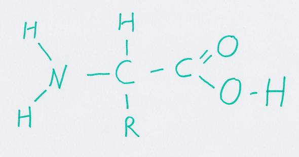 Meine Zeichnung / Darstellung einer Aminosäure (AS)  - (Ernährung, Chemie, Biologie)