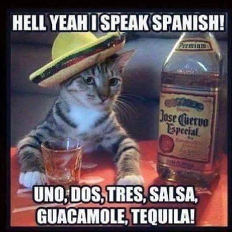 Lied Spanisch