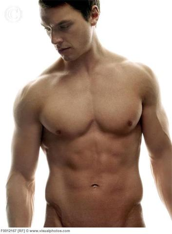 Das Bild :) - (Körper, Muskeln, Oberkörper)