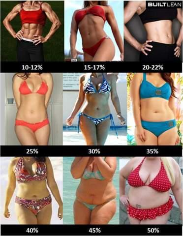An die Männer wie viel Körperfett findet ihr bei Frauen am schönsten?