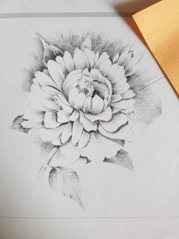 An die Zeichnerinnen und Zeichner: Wo würdet ihr anfangen, um das folgende Bild zu zeichnen? Von außen nach innen oder von innen nach außen?