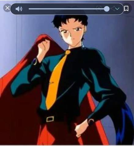 An Sailor Moon gucket?