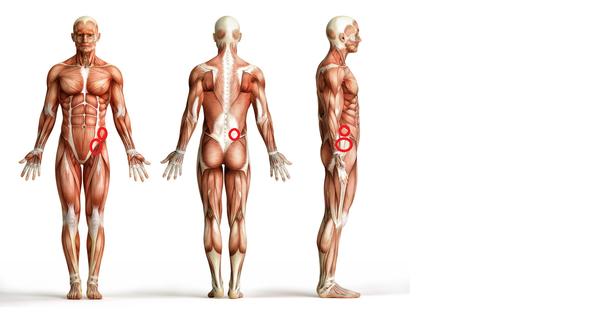 Schmerzlokalisation  - (Sport, Medizin, Schmerzen)