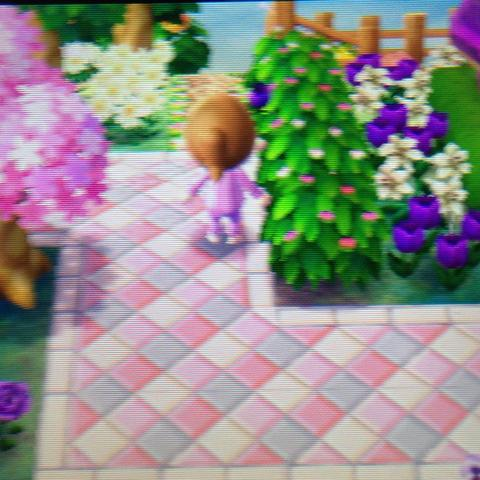 Animal Crossing New Leaf Qr Code Boden Acnl