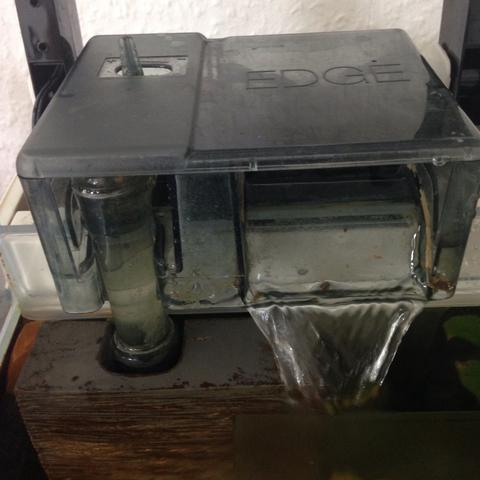 Filter - (Fische, Aquarium, Filter)