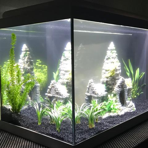 Aquarium  - (Plastik, AQ)